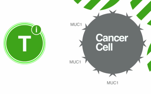 Cancer Cure Israel